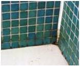 Clean Tile Grout for Bathrooms