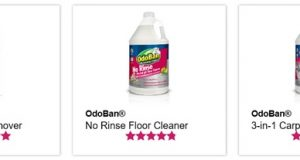 OdoBan 3-in-1 Carpet Cleaner