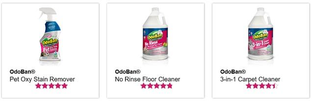 OdoBan 3-in-1 Carpet Cleaner